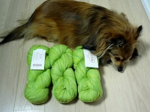 Ember with bright Knit Picks Stroll Tonal yarn