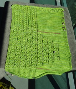 Bright Cardi, over half done